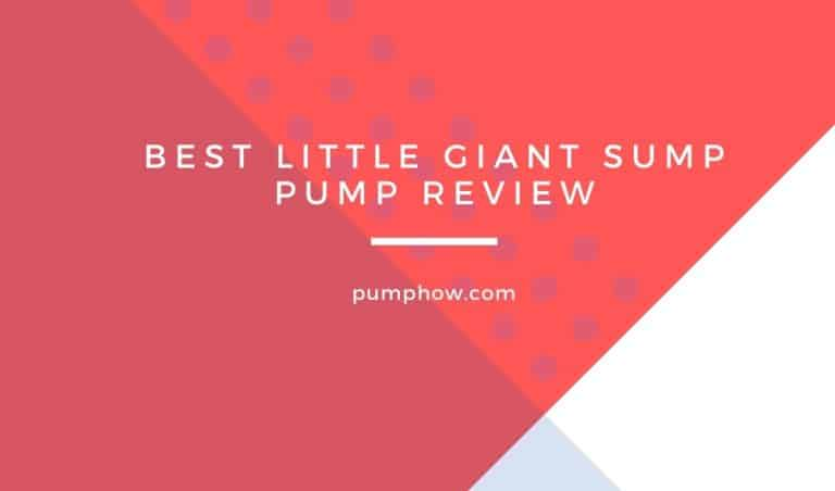 Best Little Giant Sump Pump Review: 5 Models Compared